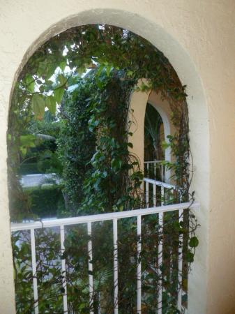 The Caribbean Court Boutique Hotel: view standing at the front door of room 123