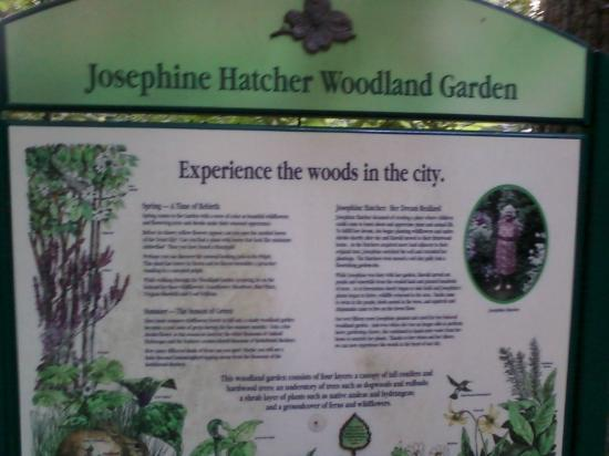 Hatcher Garden & Woodland Preserve : Inside the park