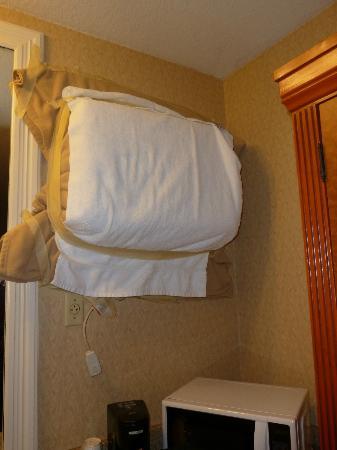Best Western Plus Anaheim Inn: nuovamente l'impacchettamento