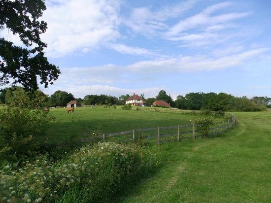 Waters End Farm B & B: Zicht op woonhuis vanuit achterzijde van de tuin