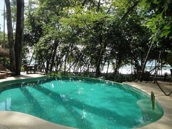 Arenas del Mar Beachfront & Rainforest Resort : piscine 2 vue du restaurant
