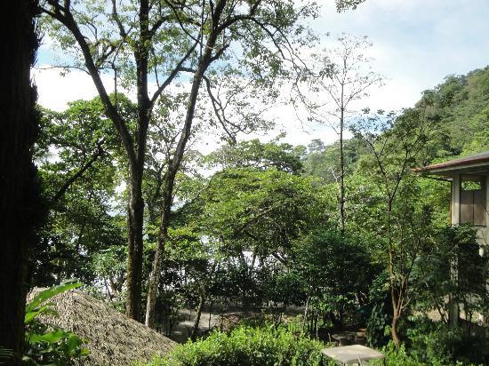 Arenas del Mar Beachfront & Rainforest Resort : magnifique vue