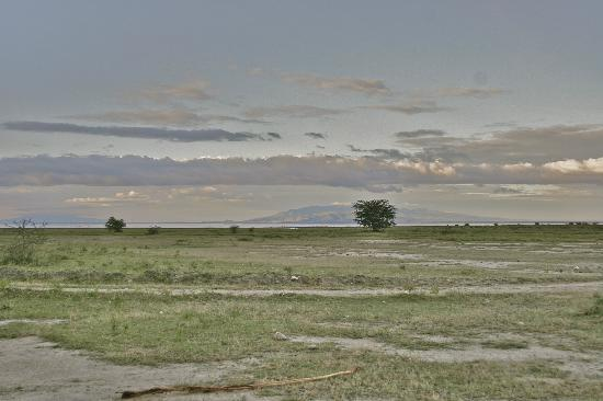 andBeyond Lake Manyara Tree Lodge: view