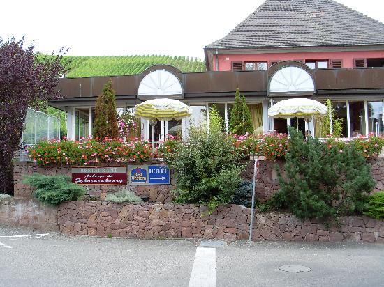 Auberge du Schoenenbourg: le restaurant du schoenenbourg