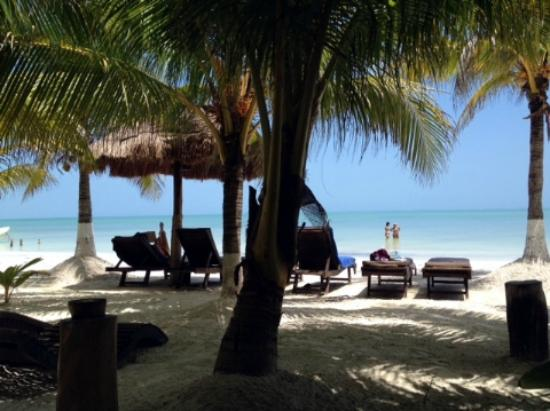 Beachfront Hotel La Palapa: Hanging out under the palapas at the beach at the hotel