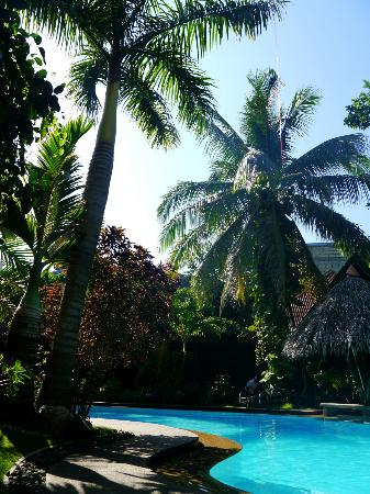 Alona Tropical Beach Resort: Pool :)