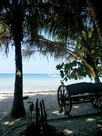 Alona Tropical Beach Resort: Beach