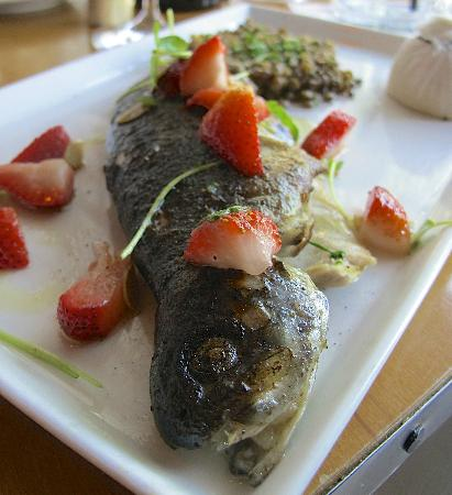"""Sovana Bistro: Pennsylvania Trout with Braised Lentils, """"Chopped"""" Spinach, Toasted Almonds, Strawberry Salad"""