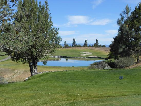 The Rex Club Cabins: Fall River golf course near hole 18