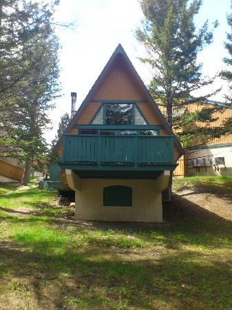 Douglas Fir Resort & Chalets: View of cabin 118 from the forest