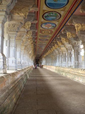 Ramanathaswamy Temple : The corridor