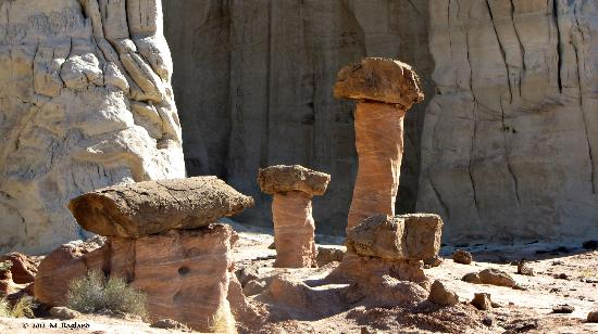 Paria Rimrocks Toadstool Hoodoos: More Toadstools