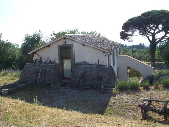 Azienda Agrituristica Borgo Roncone: La nostra Casetta