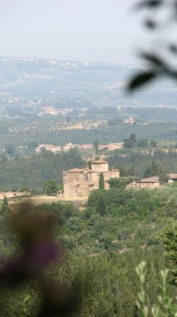 Antico Podere Marciano: another swatch of the view from many locations of the podere