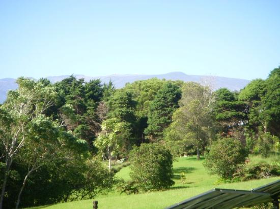 Waianuhea Bed & Breakfast: View from garden to Mauna Kea