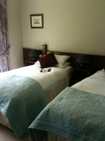 Grove Lodge Riverside Guest House: twin room 9