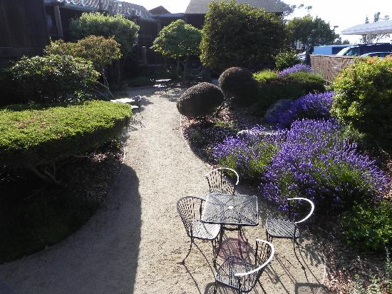 Harbor Lite Lodge: Garden