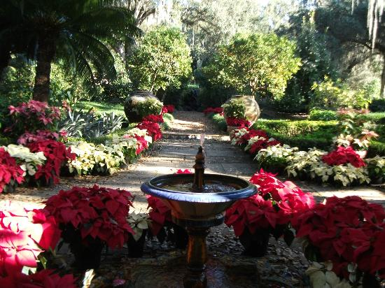 At Christmas they decorate the gardens and estate - Picture of Bok ...