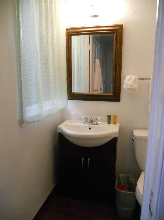 Peach Tree Inn & Suites: Small bathroom in standard room