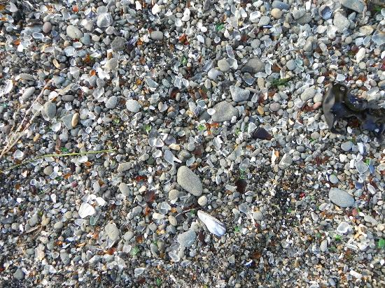Glass Beach: Glass on the Beach