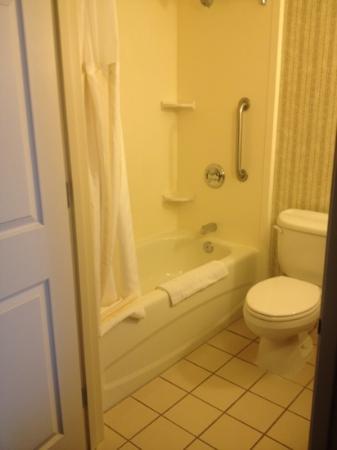 Hilton Garden Inn Overland Park: bath