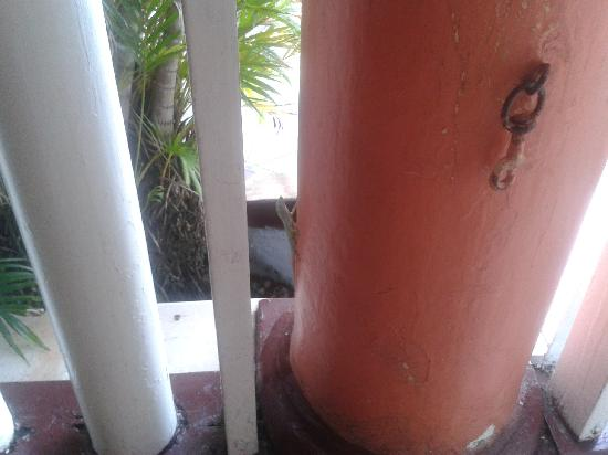 Indies Hotel: Gecko in the lobby