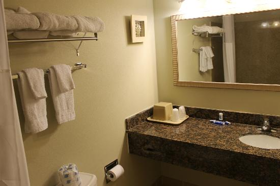 Cape Shore Inn : bathroom