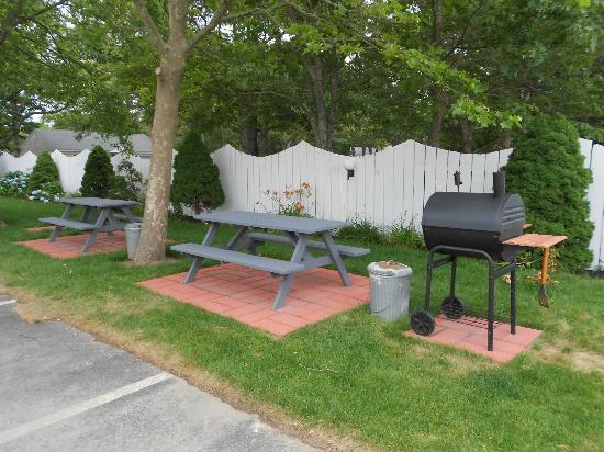 Cape Shore Inn: picnic area