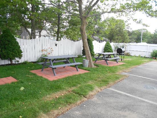 Cape Shore Inn: picnic area