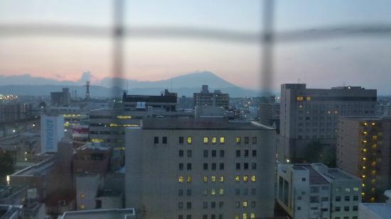 Toyoko Inn Morioka Ekimae : View of Mt Iwate