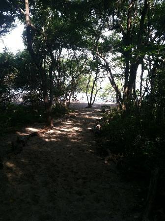 Cala Luna Luxury Boutique Hotel & Villas: Walking path to beach
