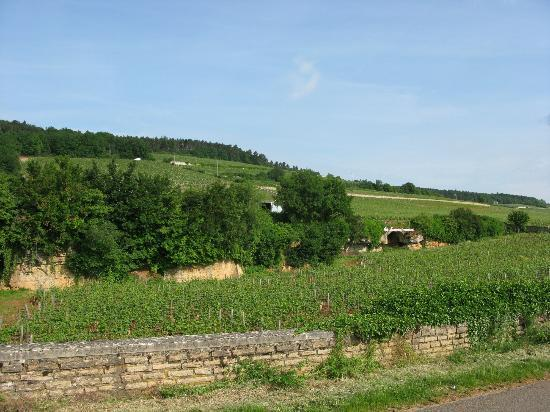 Aux Quatre Saisons Wine Tours : The beautiful beginning of your journey.