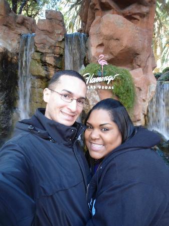 Flamingo Las Vegas Hotel & Casino: :-)