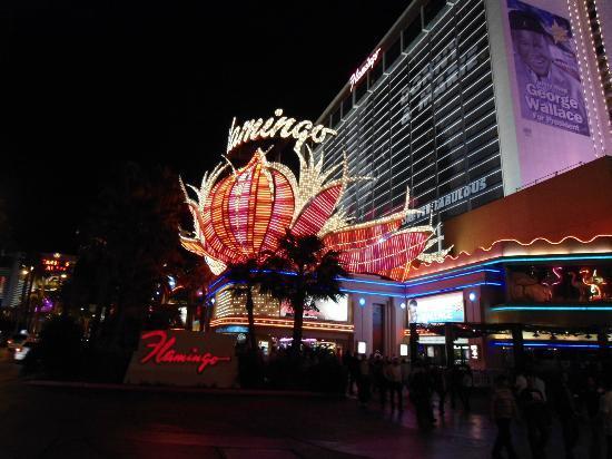 Flamingo Las Vegas Hotel & Casino: vista del letreto en la noche