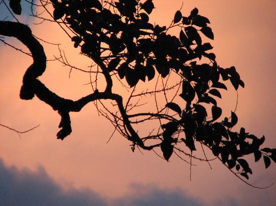 Savasi Island Resort: Sunset