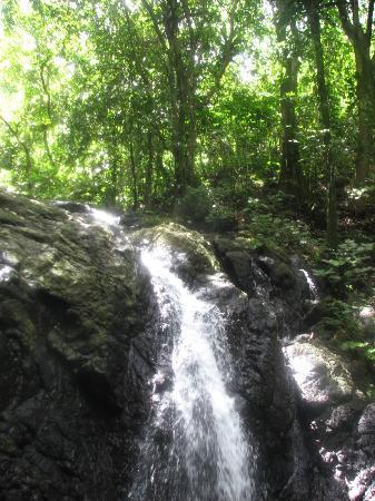 Savasi Island Resort: Waterfall