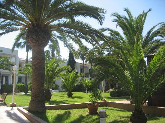Insotel Hotel Formentera Playa: Giardino
