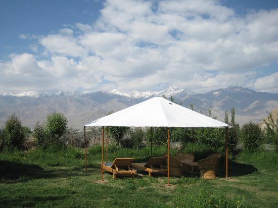 Ladakh Sarai: Common Area to relax