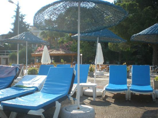 Aegean Garden: Sunbeds by the sea with the bar in the background