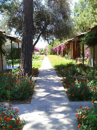 Photo of Denizati Holiday Village Gumuldur