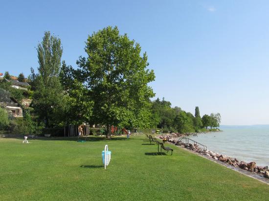 Tihany Atrium : Nice well kept beach with big trees to give shade