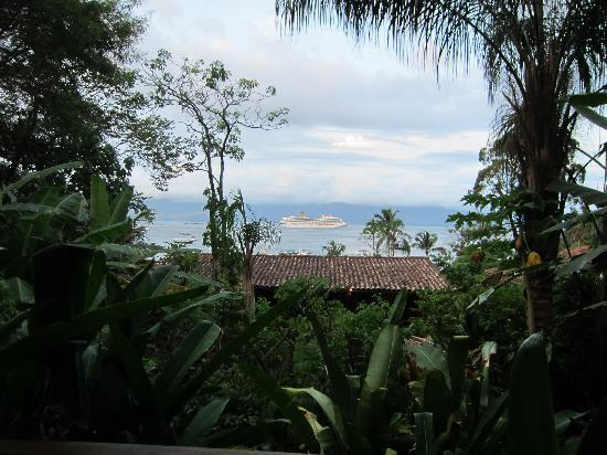 Pousada Naturalia: View from our room