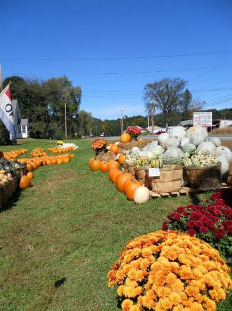 Walpole, Nueva Hampshire: Autumn at Pete's Stand