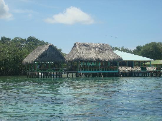 Bocas del Toro, Panamá: Cayo Coral - Restaurante
