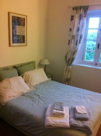 Mas Saint Michel : cozy room with olive color