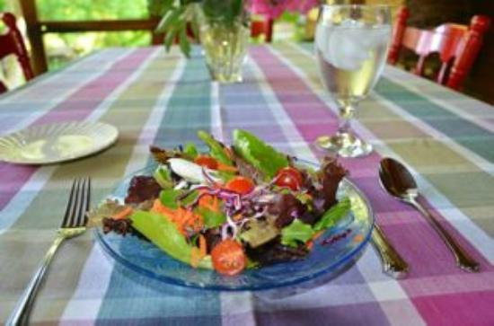 Snug Hollow Farm Bed & Breakfast: Fresh salad