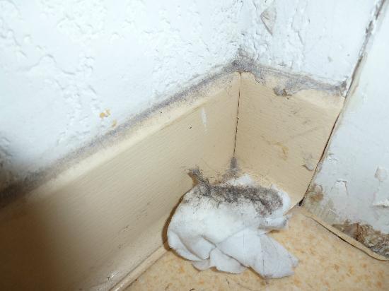 FranceLoc Residence Le Saint Etienne : salissures et saleté derrière porte de salle de bain