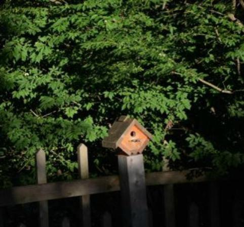 Snug Hollow Farm Bed & Breakfast: Birdhouse
