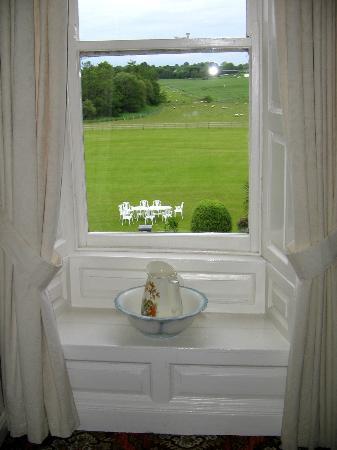 Inch House: Garden View