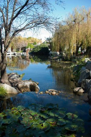 Chinese Garden of Friendship: Calm and serene